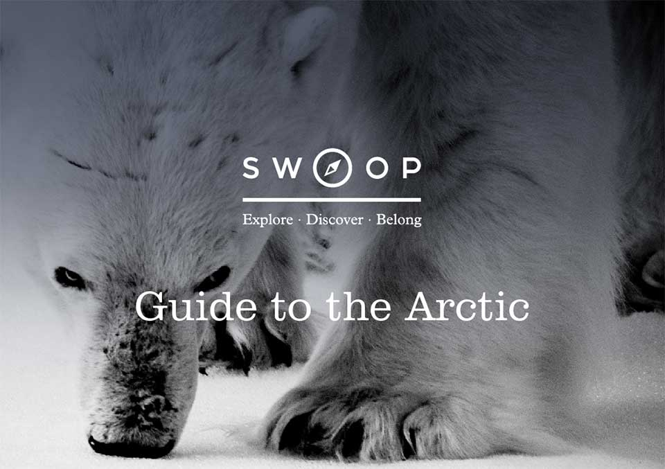 Swoop Arctic Guide cover